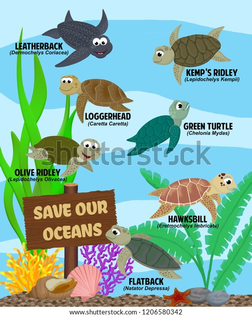 """Seven different sea turtles (Leatherback, Loggerhead, Kemp's Ridley, Green, Olive Ridley, Hawksbill, and Flatback),  swimming amongst plants, shells, corals, and a wood sign saying """"save our oceans"""""""