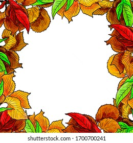 Several hand drawn branches with autumn leaves combined in elegant frame. Bright yellow, green, red, brown. Decorative element for designs, prints. Raster composition, white background in the center