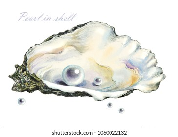 several of the pearls in the pearl shell