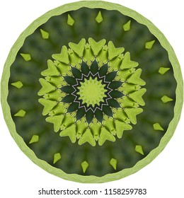 Shades of green, lime green, dark green mandala with geometric pattern. Decorative element, ethnic design, web design, anti-stress therapy, meditation.