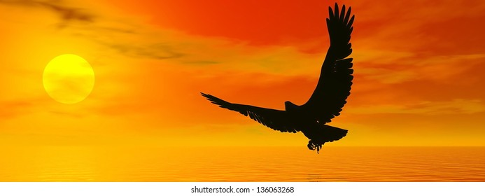 Shadow of an eagle flying to the sun by red sunset over the ocean