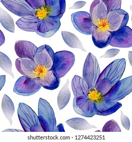 Shafran,  Seamless crocus floral pattern on white background with summer garden flowers, watercolor illustration