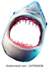 Shark Face 3D Image Design