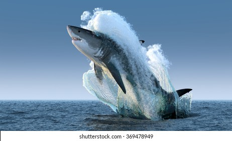Shark jumps out of the water