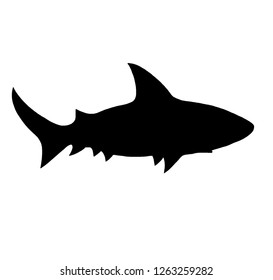 Shark silhouette isolated on white background.