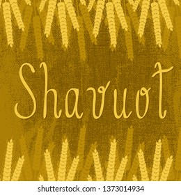 Shavuot. Concept of Judaic holiday. Brown background, burlap texture, ears of wheat, text name of the holiday