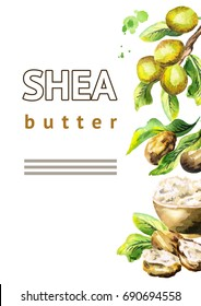Shea butter with nuts and green leaves background. Watercolor hand-drawn illustration