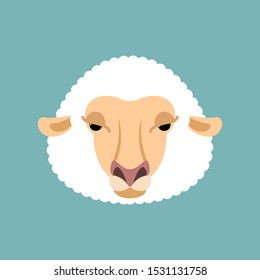 Sheep face isolated. Ewe head