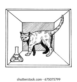 Shroedinger cat in box experiment with poison raster illustration. Interpretation of quantum mechanics. Scientific physical theory. Scratch board style imitation. Hand drawn image.