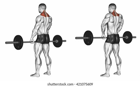 Shrugs with barbell. 3D illustration