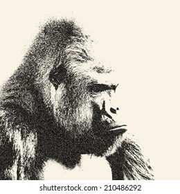 Side face portrait of gorilla male, severe silverback, on sepia background. Menacing expression of the great ape, the biggest monkey of the world. Amazing illustration with old worn out effect.
