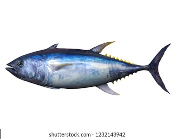 Side view of bluefin tuna 3d render