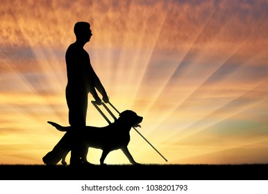 Silhouette of a blind man disabled man follows a dog guide on a sunset background. The concept of the blind invalid and the dog guide