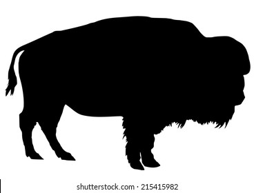 silhouette of the buffalo on white background
