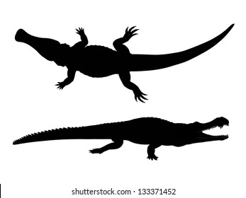 Silhouette of a Crocodile Computer generated 2D illustration