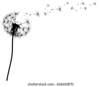 Royalty Free Dandelion Tattoo Images Stock Photos Vectors