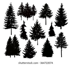Silhouette of different pine trees. Can be used as poster, badge, emblem, banner, icon, sign, decor...