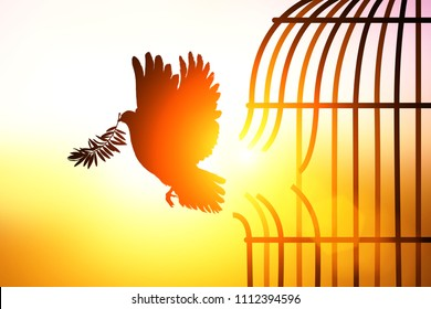 Silhouette of Dove carrying olive leaf branch out of boken cage to Freedom concept  and international aday of peace