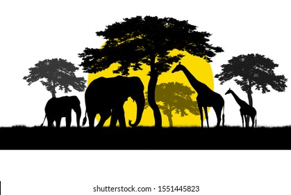 silhouette giraffe and elephant in safari with sunset time in white background