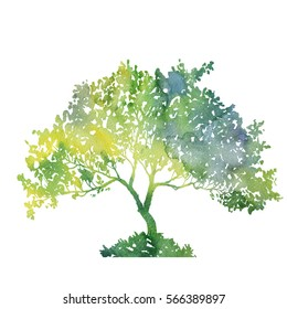 silhouette of green tree with leaves drawing in watercolor, hand drawn illustration