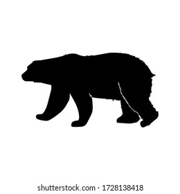 Silhouette grizzly bear on a white background illustration