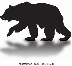silhouette of a grizzly bear with a shadow