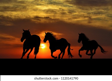 Silhouette of horses galloping at sunrise