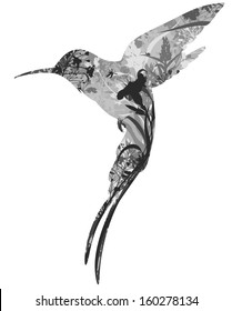 silhouette of hummingbird in tropical flowers, grass and insects. black and white. white background