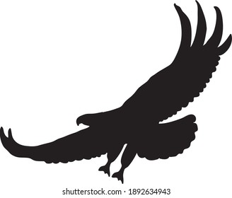 Silhouette of a hunter eagle with a white background