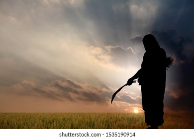 Silhouette of a lady farmer harvesting her field.