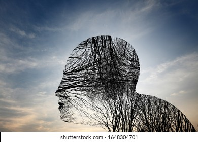 Silhouette of old barren trees forming the shape of a head with blood vein, artery and nervous system against a surreal azure sky for the health concept of mental dementia from old age.