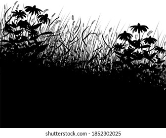 A silhouette of overgrown grass and wildflowers.