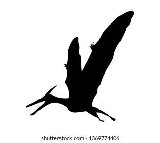 Silhouette Pterosaur dinosaur jurassic prehistoric animal. JPG illustration.