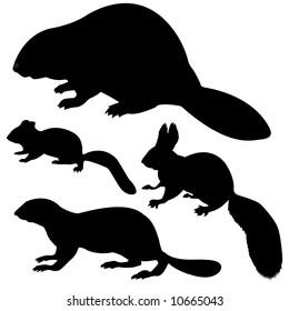 silhouettes beaver, squirrel, chipmunk, gopher