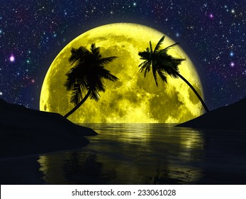 Silhouettes of palm trees on the beach on the background of the moon and the stars.Elements of this image furnished by NASA.