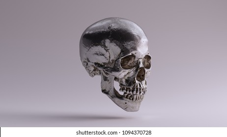 Silver Skull and Jaw Bone 3Q Right 3d Illustration skull scan scsuvizlab CC Attribution