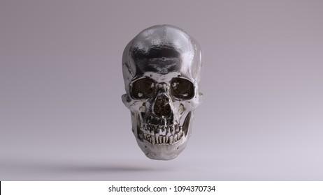 Silver Skull and Jaw Bone Front 3d Illustration skull scan scsuvizlab CC Attribution