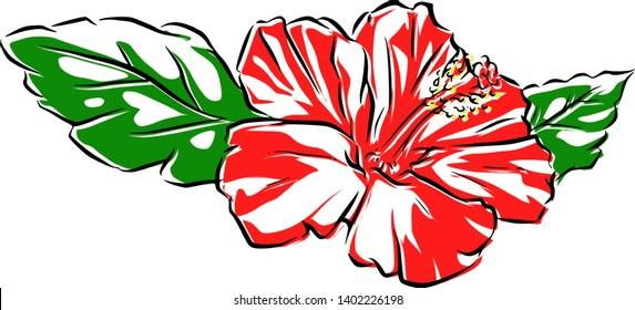 Cartoon Hibiscus Images Stock Photos Vectors Shutterstock