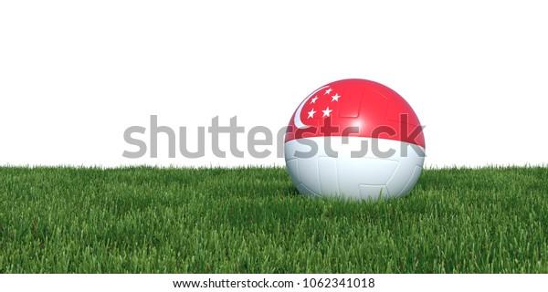 Singapore Singaporean flag soccer ball lying in grass, isolated on white background. 3D Rendering, Illustration.