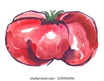 Single big ripe heirloom tomato painted in watercolor on clean white background