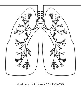 Single continuous line art anatomical human lungs silhouette one sketch outline drawing illustration