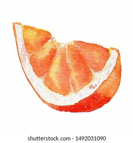Single hand drawn watercolor orange fruit slice. Element design for postcard, poster,wallpaper, wrapping paper, textile, fabric.