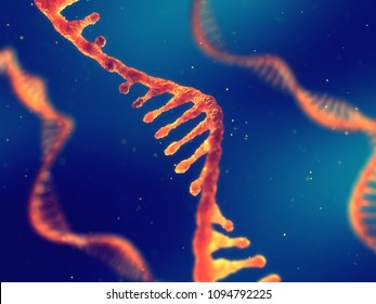 Single strand ribonucleic acid, RNA research and therapy, 3d illustration
