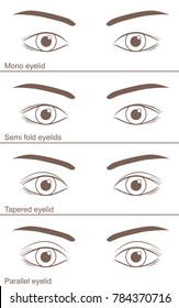 Single-edged eyelid  and Double-fold eyelid