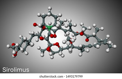 Sirolimus or rapamycin molecule. is a macrolide compound with immunosuppressant functions.  Molecule model. 3D rendering