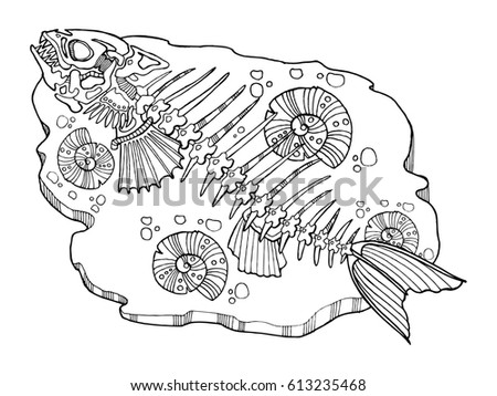 Skeleton Fish Coloring Book Raster Illustration Stock Illustration