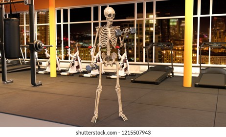 Skeleton in gym working out with dumbbells, human skeleton lifting weights in fitness facility with workout equipment, 3D rendering