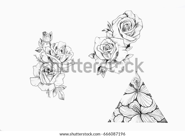 Sketch Branch Beautiful Roses Triangle Flowers Stock