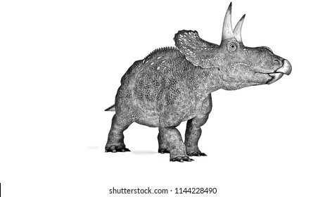 sketch of diceratops isolated on white