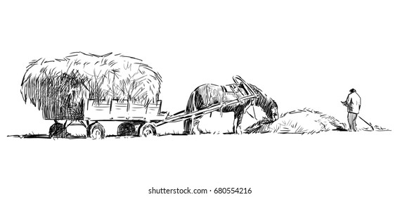 Sketch of a farmer harvests the hay